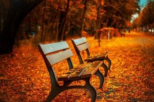 bench-560435_1280